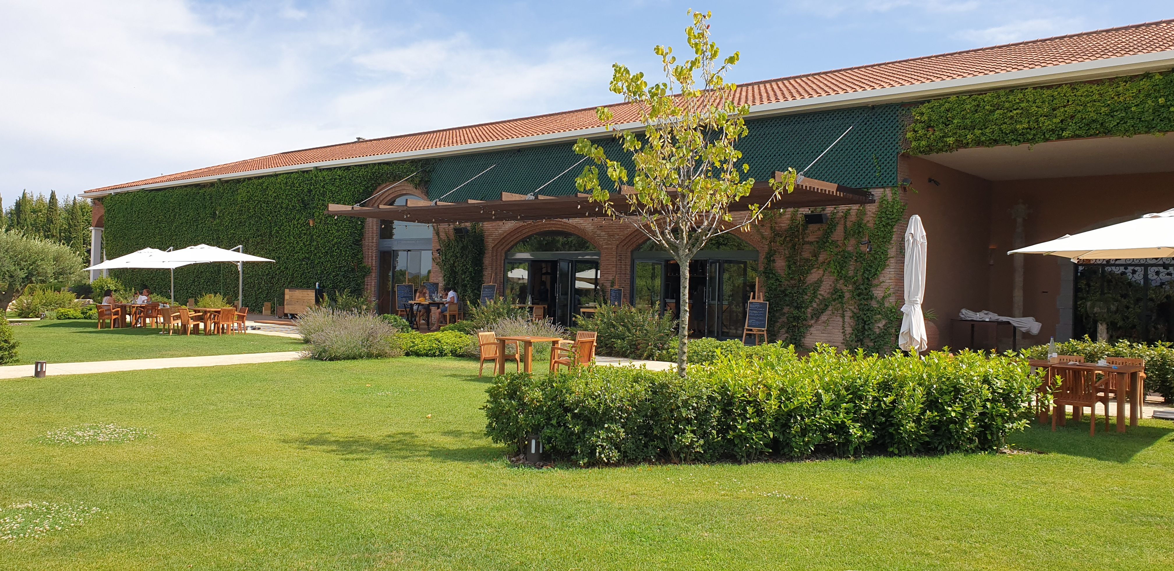 Torres- Winery
